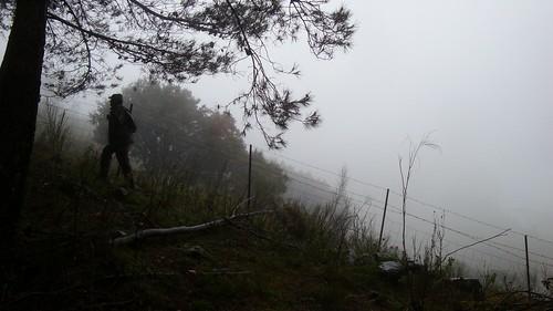 Camino entre la lluvia