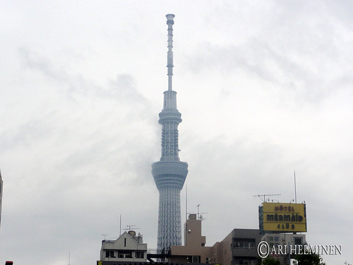 sky tree on a cloudy day