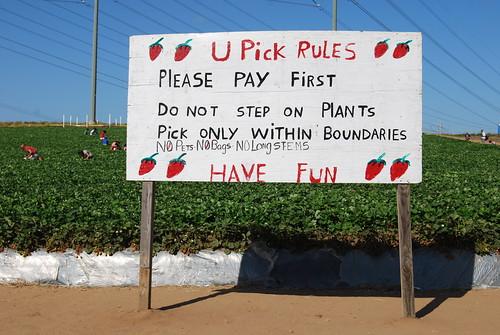 U Pick Rules