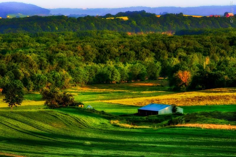 Pastoral dawn