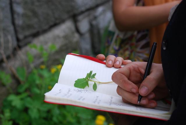 herb school