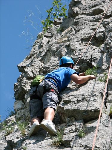 Alin cățărând
