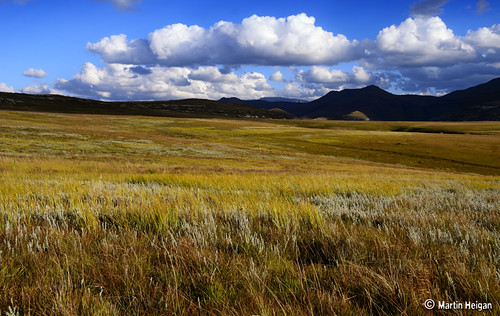 Free State Autumn Landscape by Martin_Heigan