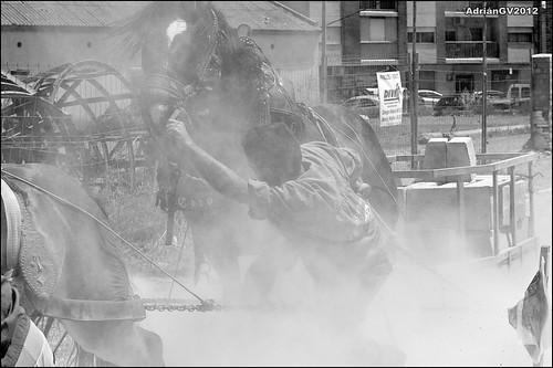 Tir i arrossegament 10 by ADRIANGV2009