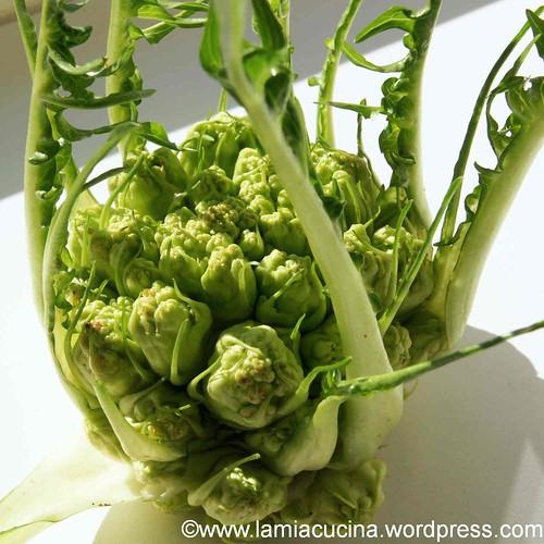 GALA-Gnocchi 2_2012 03 26_3999