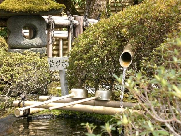 Nikko en 1 día