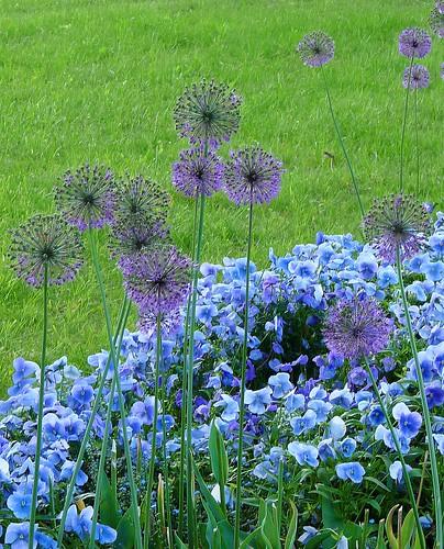 Impressionen Gartenschau Nagold