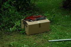 DSC_0349-swarm-in-box
