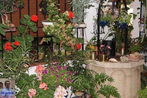 Pozo y flores Patio Córdoba