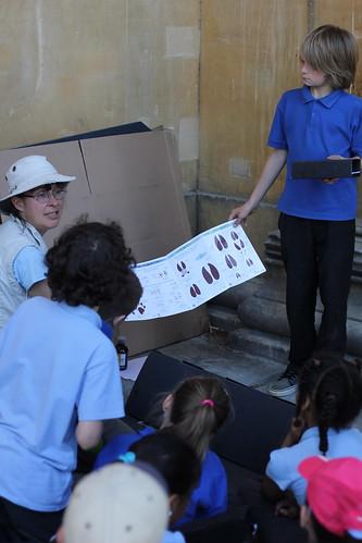 Gill Brown looking at mammal tracks