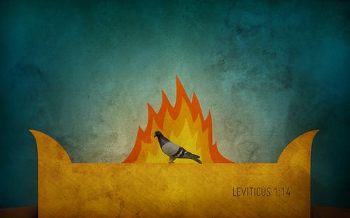 leviticus 1-14_905