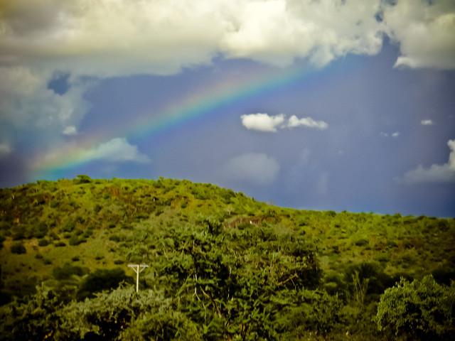 Ze East African Rainbow