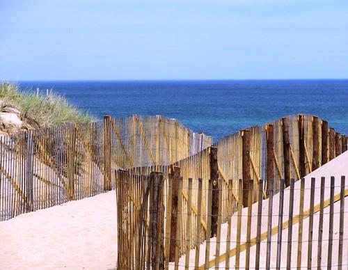 Race Point Dunes