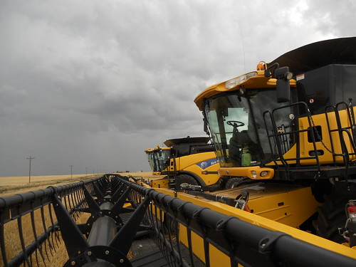 Gloomy clouds loom over the combines