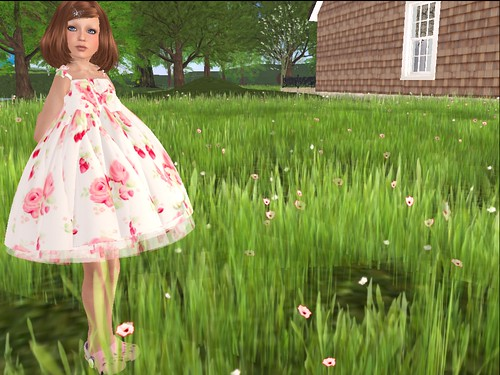 rosey posey blog 1_001