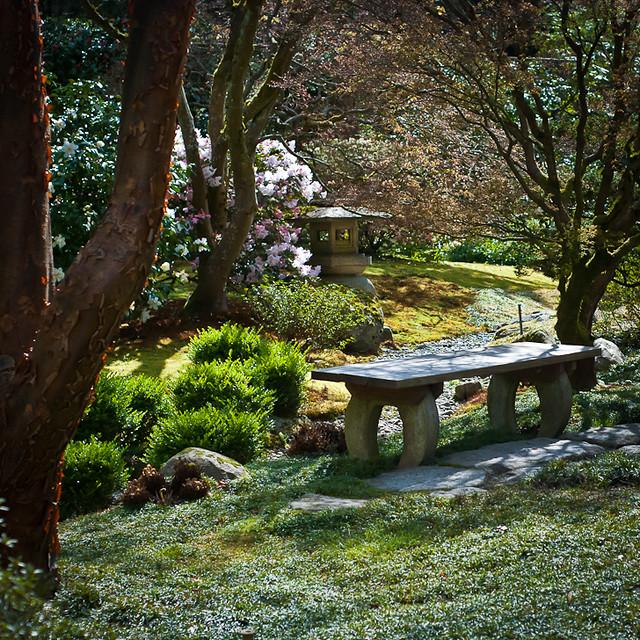 Seattle Japanese Garden bench and lantern  Flickr  Photo