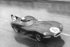 Jaguar D-Type - Le Mans 1955
