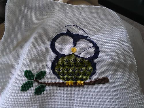Owl progress