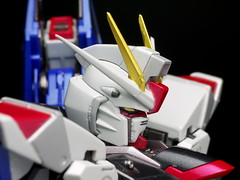 Metal Build Freedom Review 2012 Gundam PH (59)