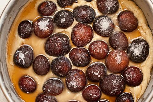 Sugar Plum Walnut Butter Cake (2 of 7)