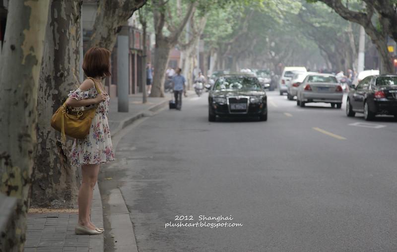 ▌上海 ▌ 我的上海印象