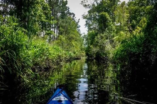 New River Paddling-45