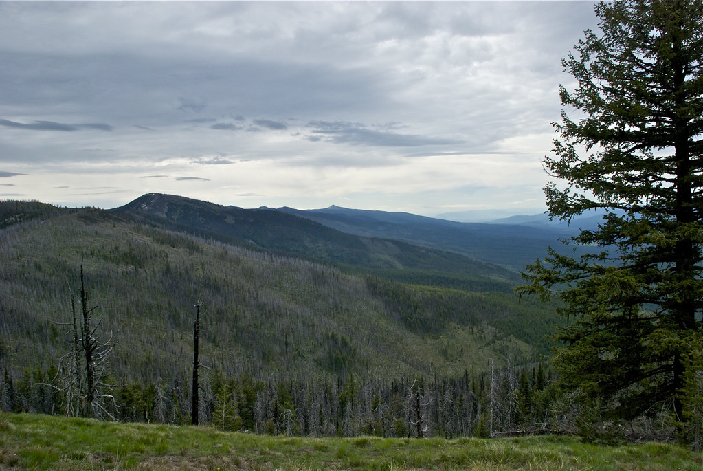 USFS Trail 98, Reservation Divide