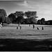 Ball Practice, Trendwood Park, July 05, 2012