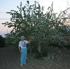 2003 Grandma 150-5065_IMG