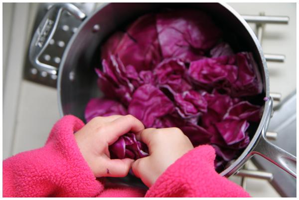 Preparing cabbage Easter egg dye