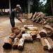 Petrified Wood Company