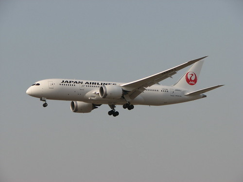 Japan Airlines Boeing 787 JA822J Landing At Delhi