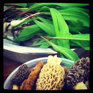 Ramps and morels
