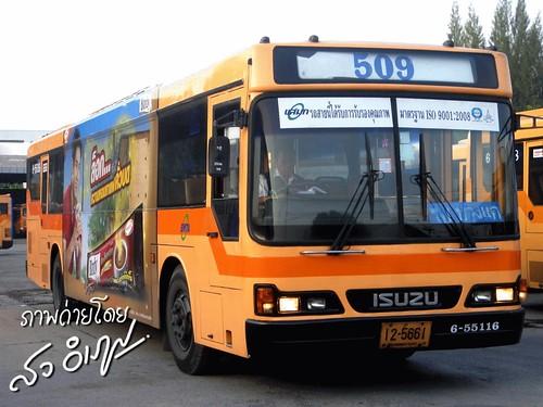 รถเมล์ 509 ของเรา