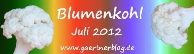 Garten-Koch-Event Juli 2012: Blumenkohl [31.07.2012]