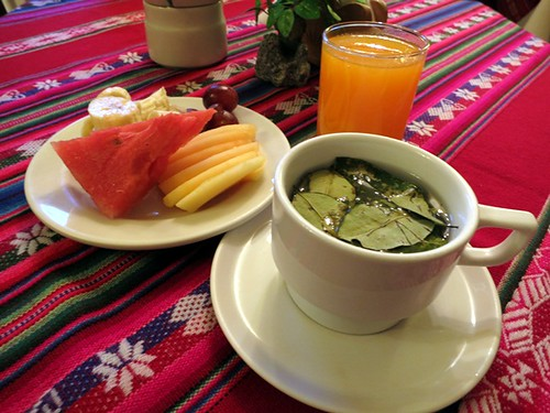 Breakfast (fruit, papaya juice, mate de coca)