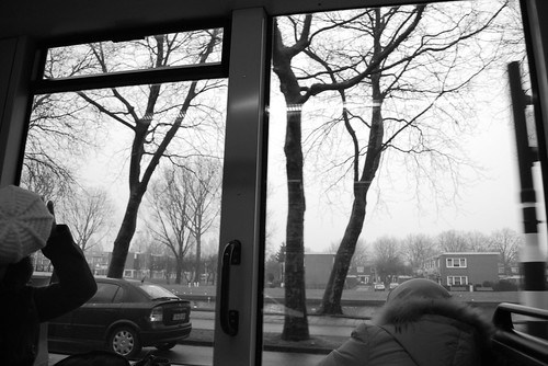 Through the Tram Window