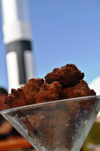 Munching on Conch Fritters Next to the Rocket Garden at KSC's New Cafe