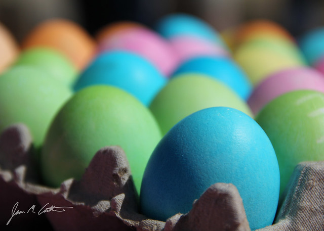 040812 Colorful Eggs