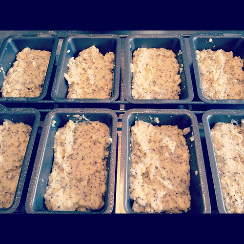 Lemon poppyseed mini loaves, ready for the oven