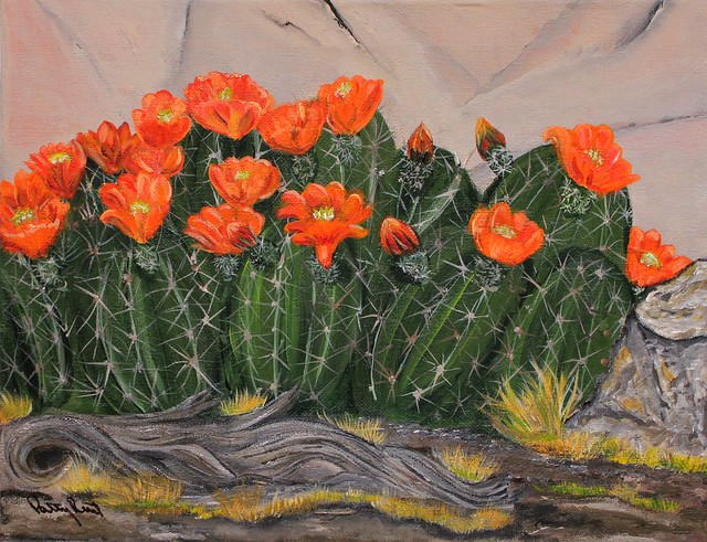 Spring Cactus