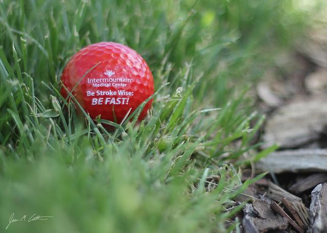 050112 Stroke Golf Ball copy