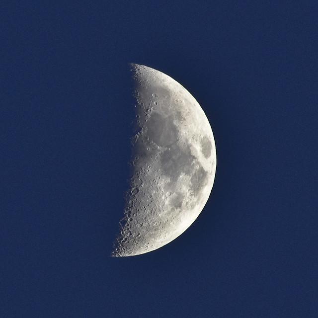 Moon in a twilight sky