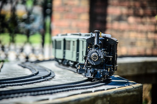 Model Steam Trains-50