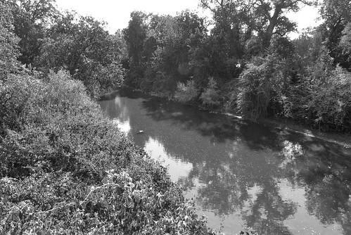 Cow Creek 01
