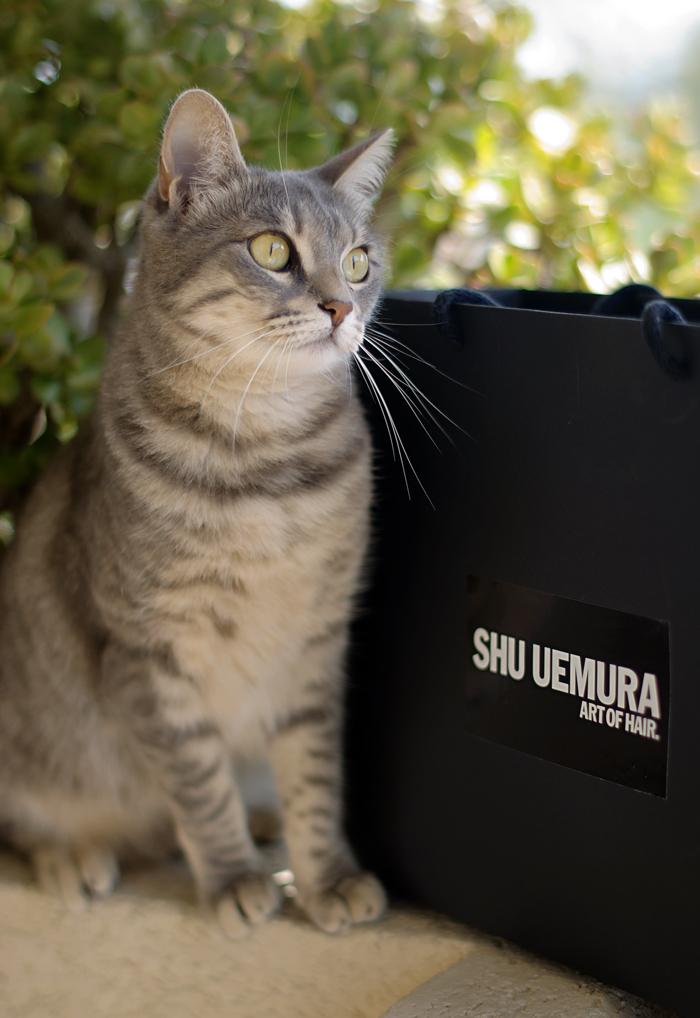 Kiki for Shu uemura and Kèrastase