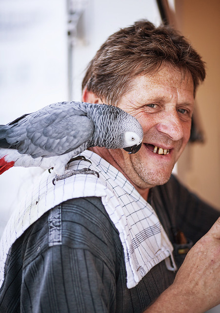 Parrot & Awesome No-teeth man!