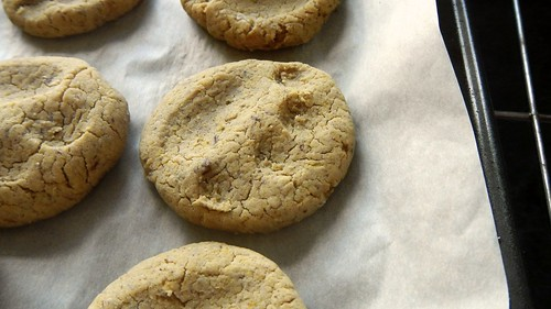 Gluten-Free Pumpkin Dog Biscuits 9