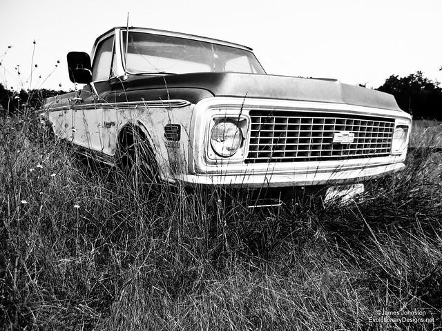 Abandoned 60s Chevrolet Custom/10 Deluxe Truck