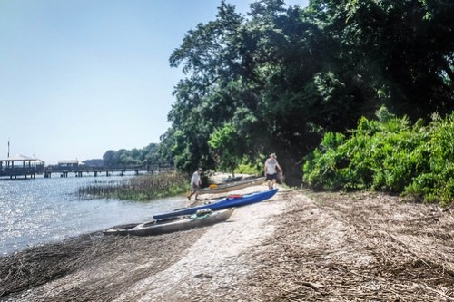 May River Paddling with Lowcountry Unfiltered-108
